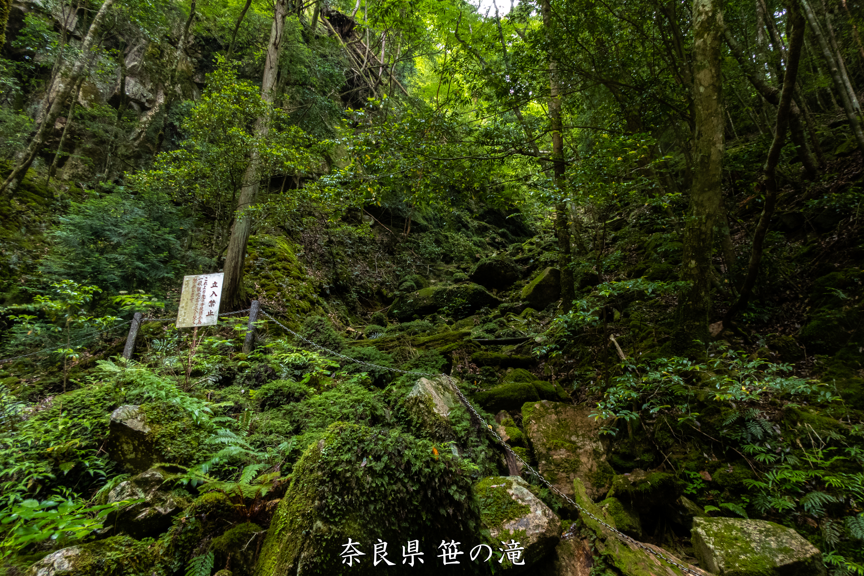 P1001030 奈良県 笹の滝 (十津川村の奥にある秘境の滝! 奈良の夏におすすめ写真撮影スポット! 写真の紹介、アクセス情報など)