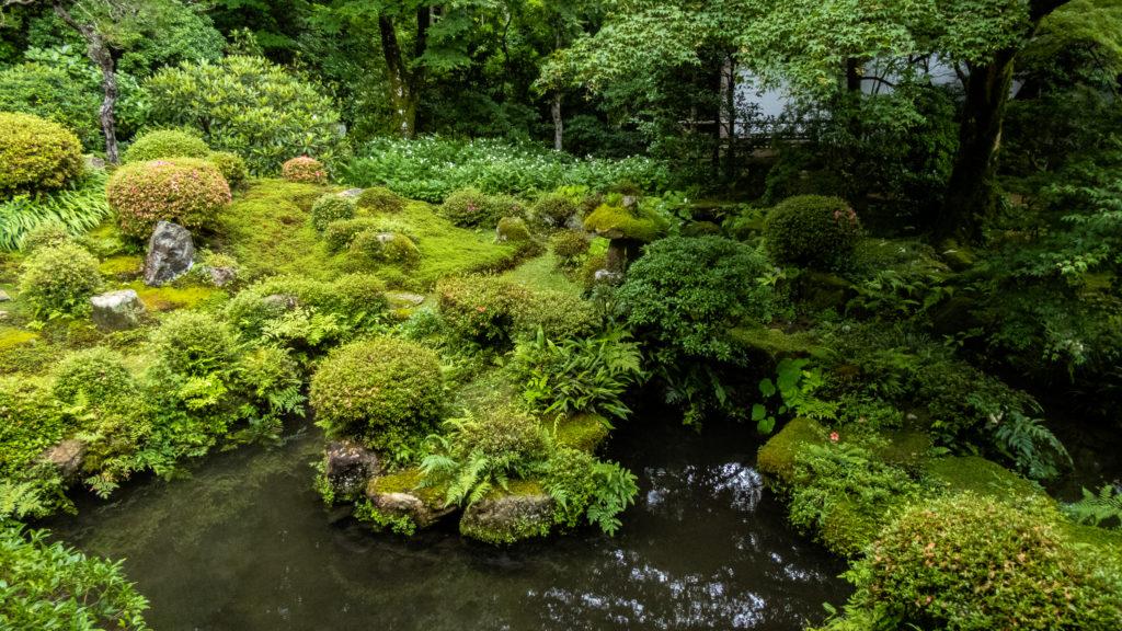 P1001355-1024x576 京都 夏の撮影スポット19選! 新緑の庭園やあじさい、海の景色など京都の夏の景色が満載! 旅行や観光スポット探しにおすすめ!