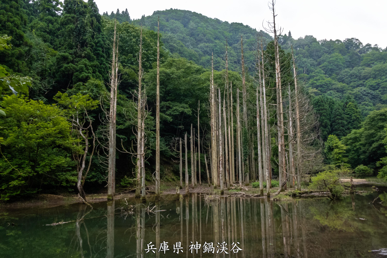 P1012170 兵庫県 神鍋渓谷公園 (迫力のある一ツ滝、二ツ滝が見所!新緑の季節におすすめ滝スポット!写真の紹介、アクセスなど)