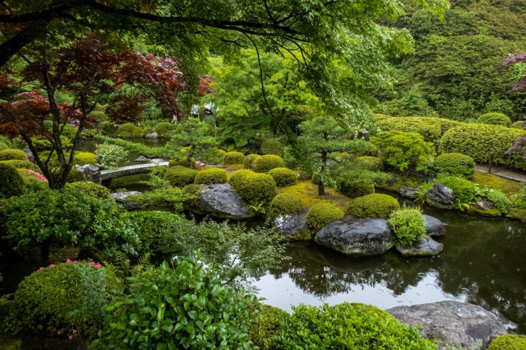 P1000469-1024x683 京都 夏の撮影スポット19選! 新緑の庭園やあじさい、海の景色など京都の夏の景色が満載! 旅行や観光スポット探しにおすすめ!