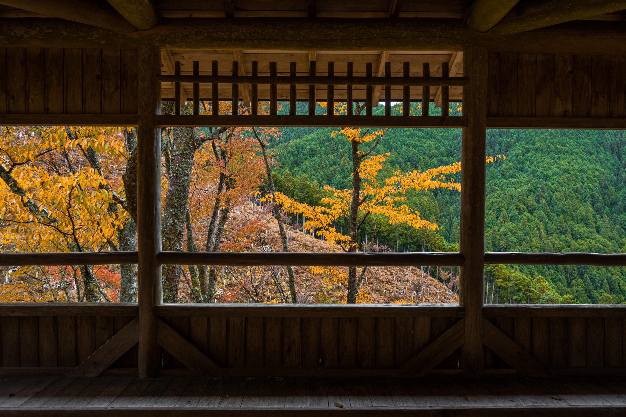 DSC00044-scaled 奈良県  吉野山(山が紅葉に染まる秋におすすめの絶景スポット! 撮影した写真の紹介、アクセス情報や駐車場情報など)