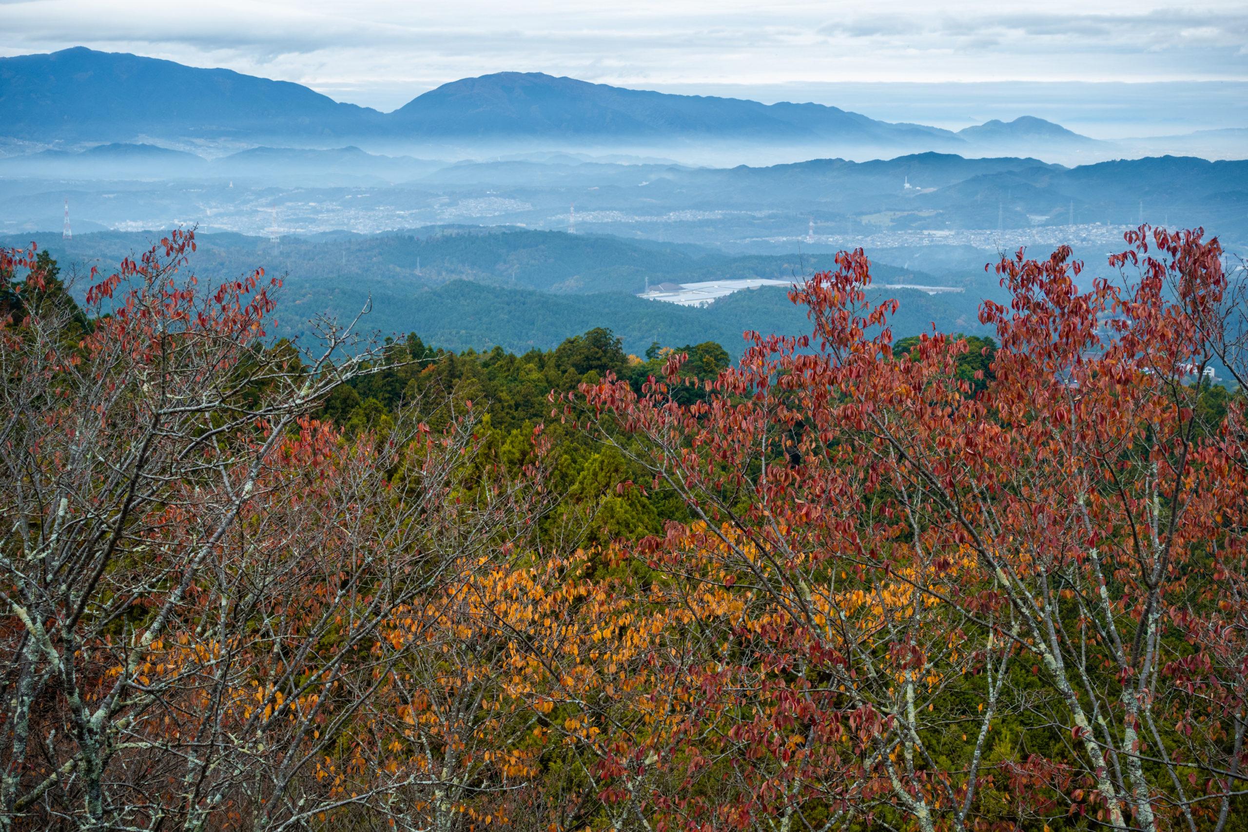 DSC00085-scaled 奈良県  吉野山(山が紅葉に染まる秋におすすめの絶景スポット! 撮影した写真の紹介、アクセス情報や駐車場情報など)