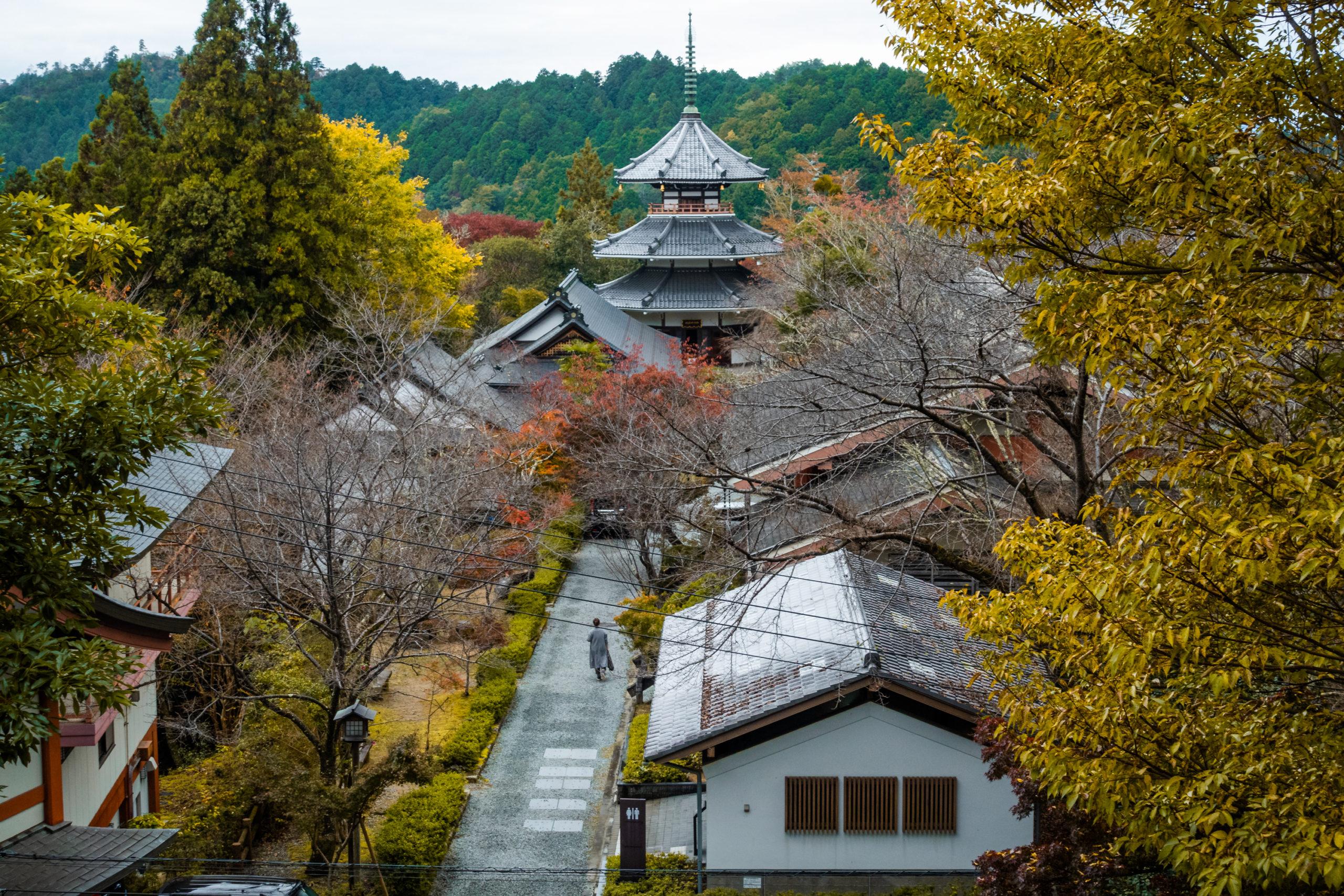 DSC00110-scaled 奈良県  吉野山(山が紅葉に染まる秋におすすめの絶景スポット! 撮影した写真の紹介、アクセス情報や駐車場情報など)