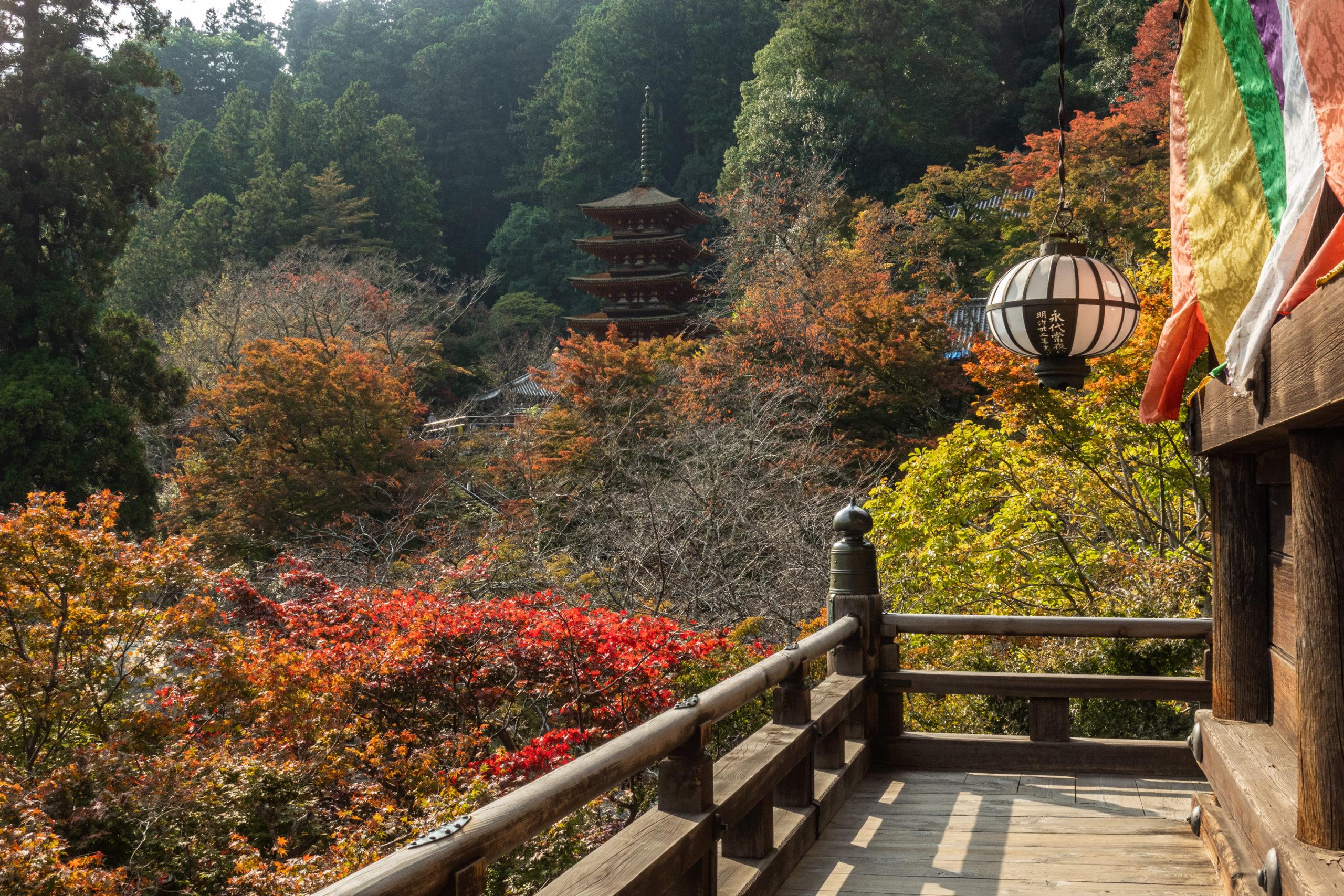 DSC00360-scaled 奈良県  長谷寺(風情を感じる五重塔と紅葉景色が美しい秋のおすすめスポット! 撮影した写真の紹介、アクセス情報や駐車場情報など)