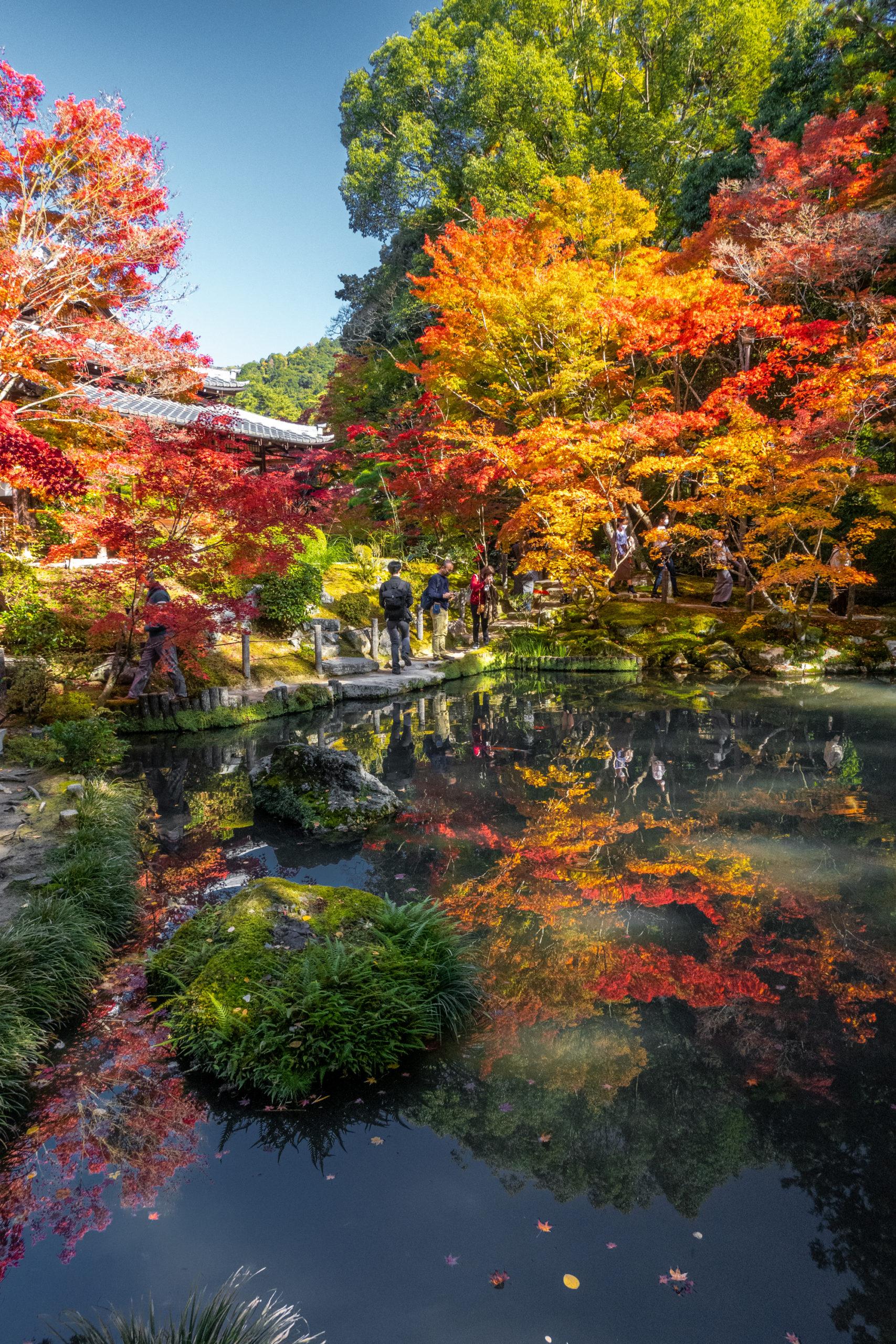 DSC00613-scaled 京都  天授庵(紅葉の美しい庭園が見所な秋におすすめのスポット!撮影した写真の紹介、アクセス情報など)
