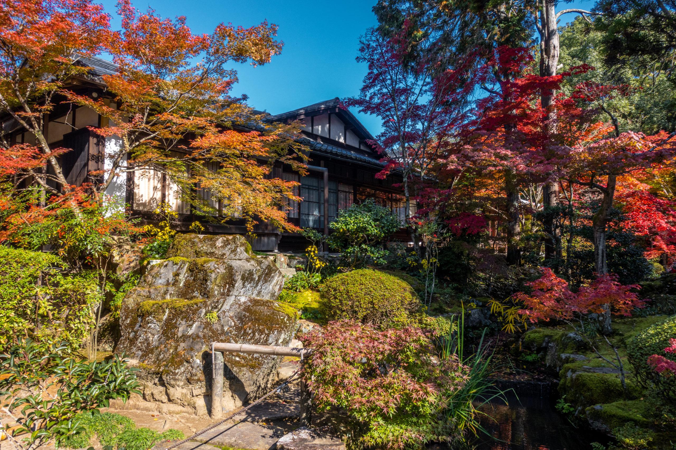 DSC00618-scaled 京都  天授庵(紅葉の美しい庭園が見所な秋におすすめのスポット!撮影した写真の紹介、アクセス情報など)