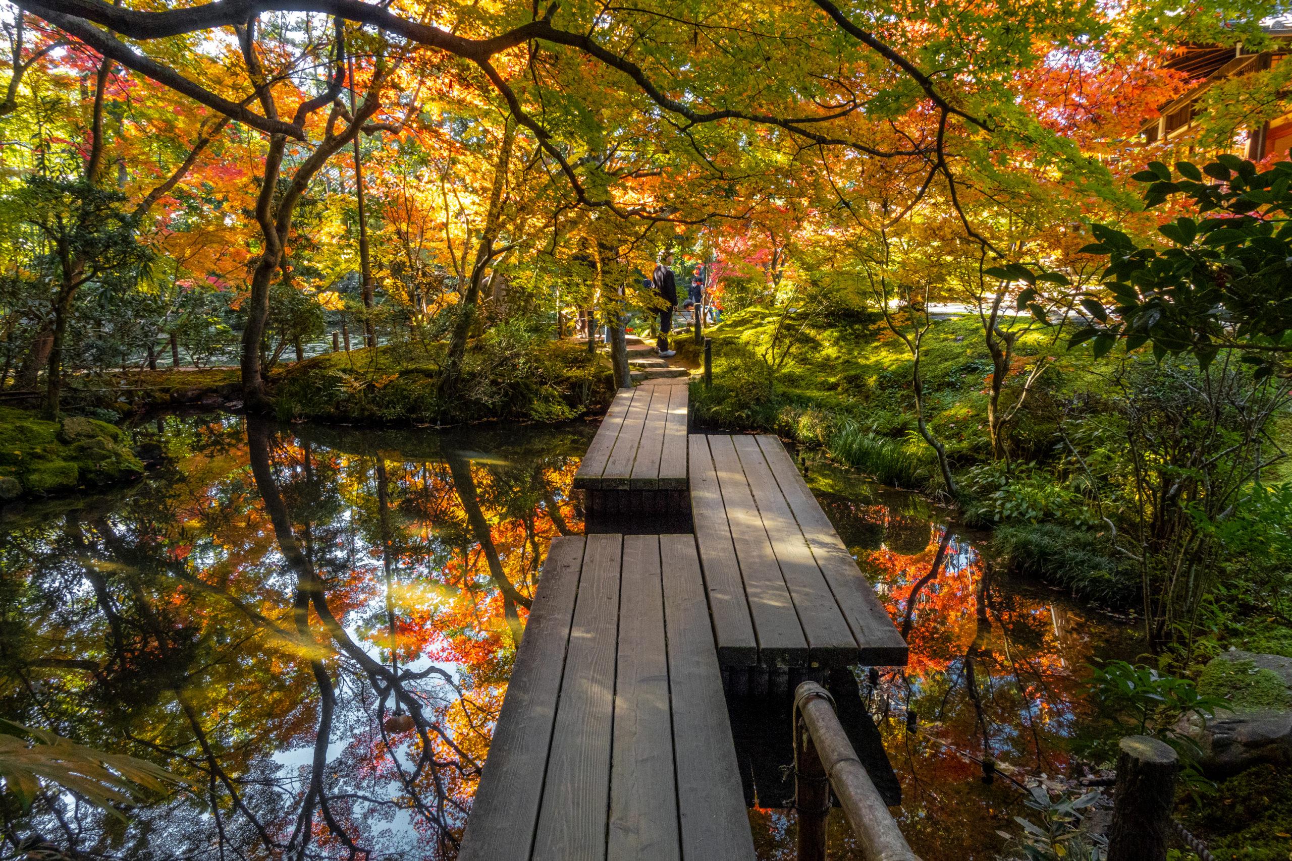 DSC00623-scaled 京都  天授庵(紅葉の美しい庭園が見所な秋におすすめのスポット!撮影した写真の紹介、アクセス情報など)