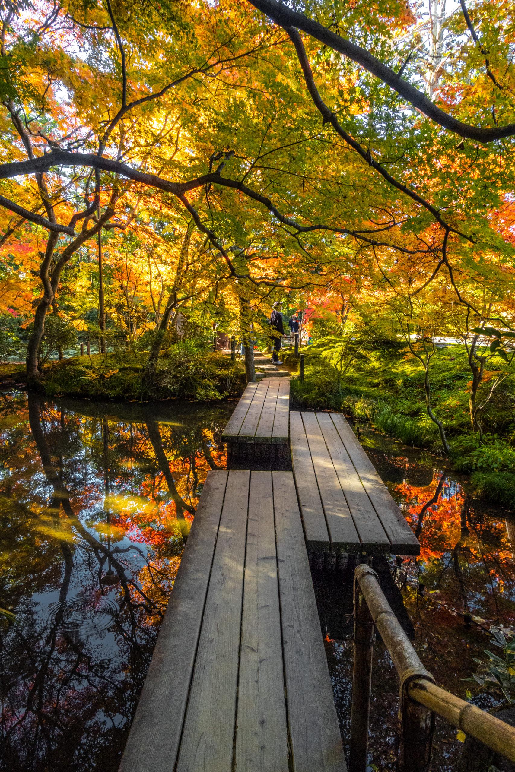 DSC00625-scaled 京都  天授庵(紅葉の美しい庭園が見所な秋におすすめのスポット!撮影した写真の紹介、アクセス情報など)