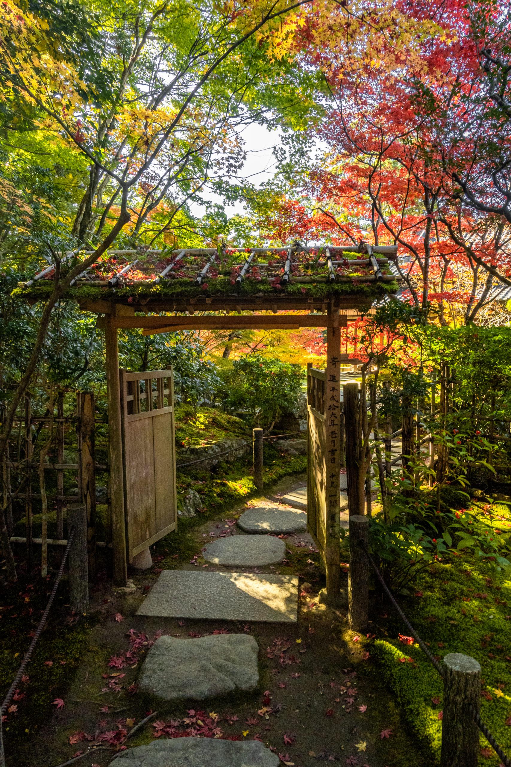 DSC00637-scaled 京都  天授庵(紅葉の美しい庭園が見所な秋におすすめのスポット!撮影した写真の紹介、アクセス情報など)