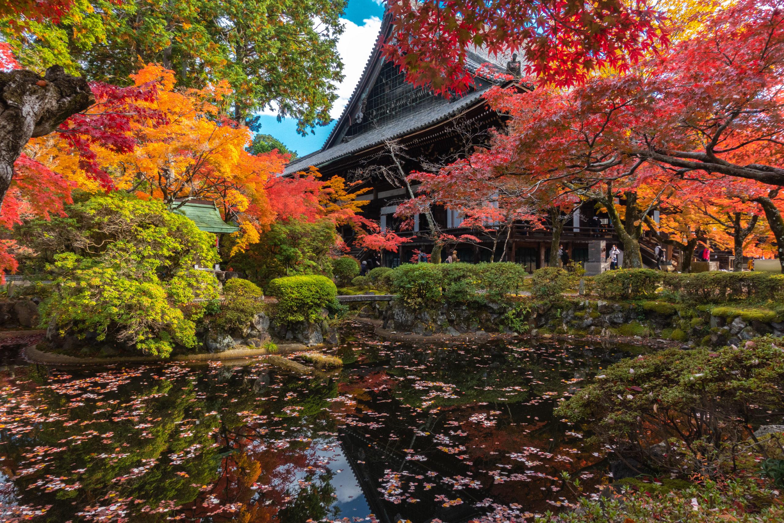 DSC00750-scaled 京都  真如堂(三重塔と紅葉の風情を感じる景色が美しい秋におすすめのスポット!撮影した写真の紹介、アクセス情報など)