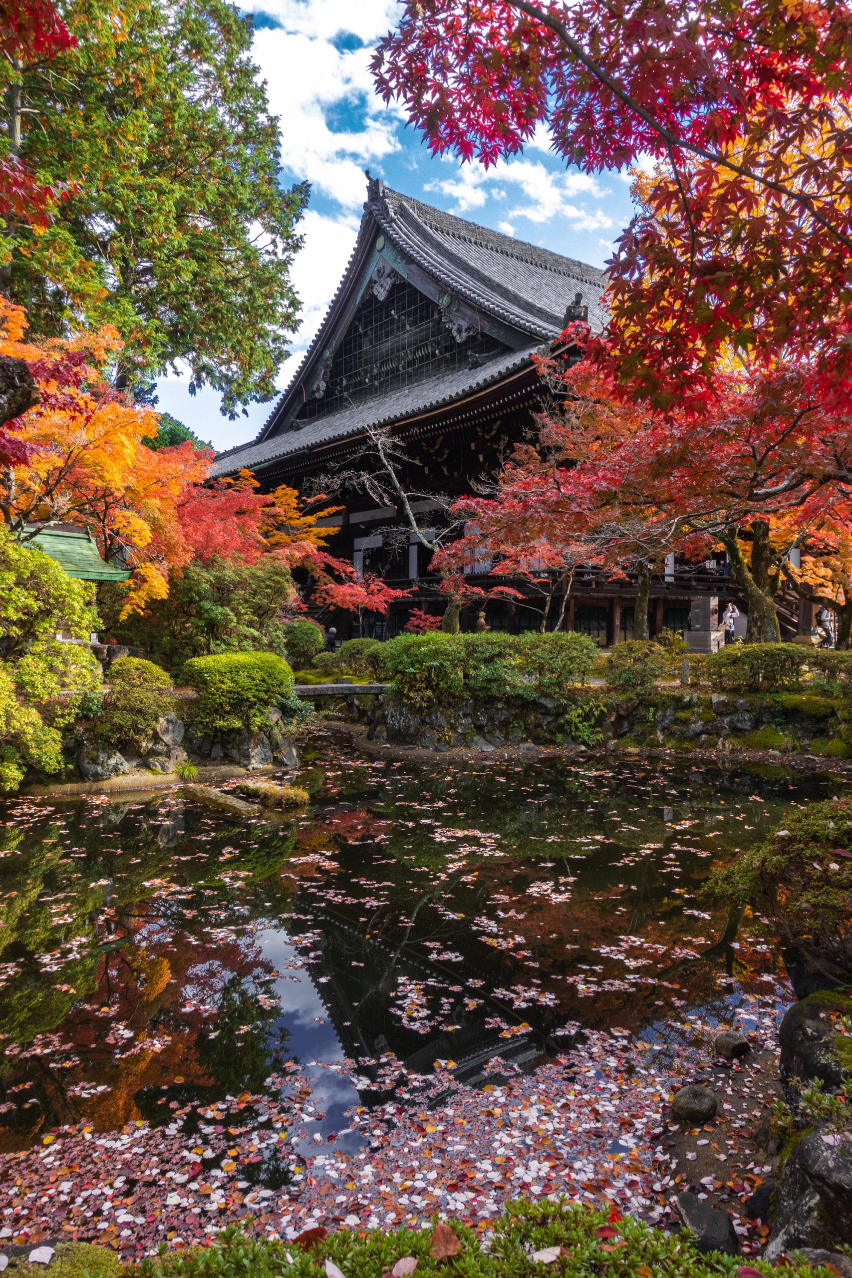 DSC00754-scaled 京都  真如堂(三重塔と紅葉の風情を感じる景色が美しい秋におすすめのスポット!撮影した写真の紹介、アクセス情報など)
