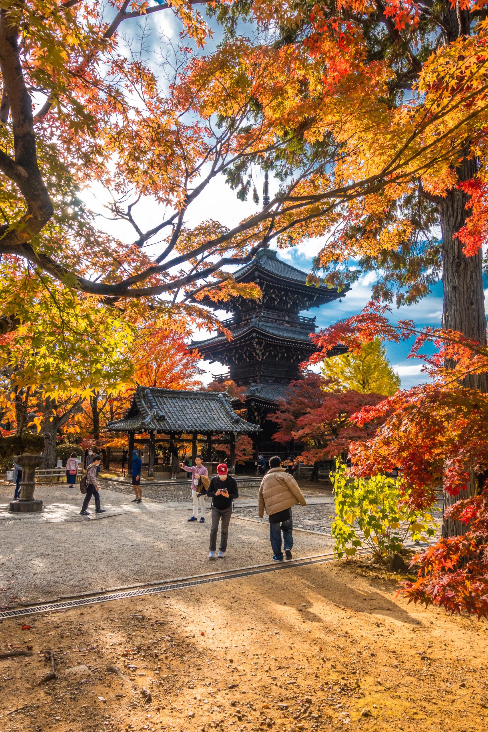 DSC00760-scaled 京都  真如堂(三重塔と紅葉の風情を感じる景色が美しい秋におすすめのスポット!撮影した写真の紹介、アクセス情報など)