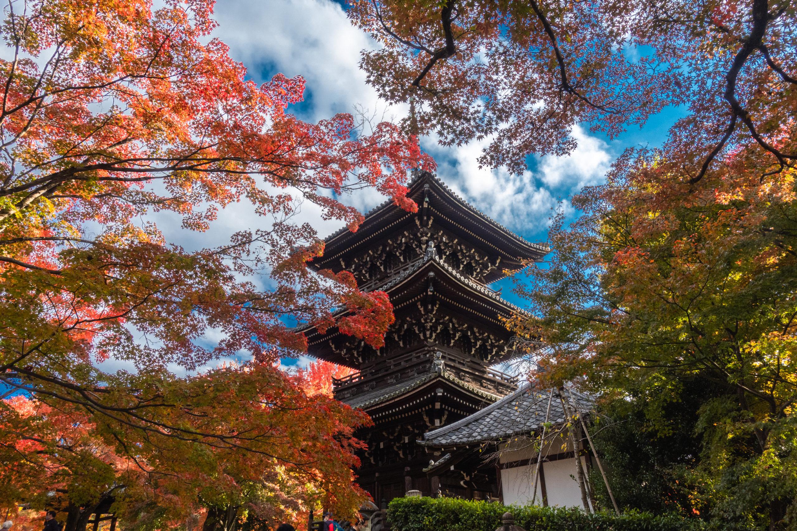 DSC00805-scaled 京都  真如堂(三重塔と紅葉の風情を感じる景色が美しい秋におすすめのスポット!撮影した写真の紹介、アクセス情報など)