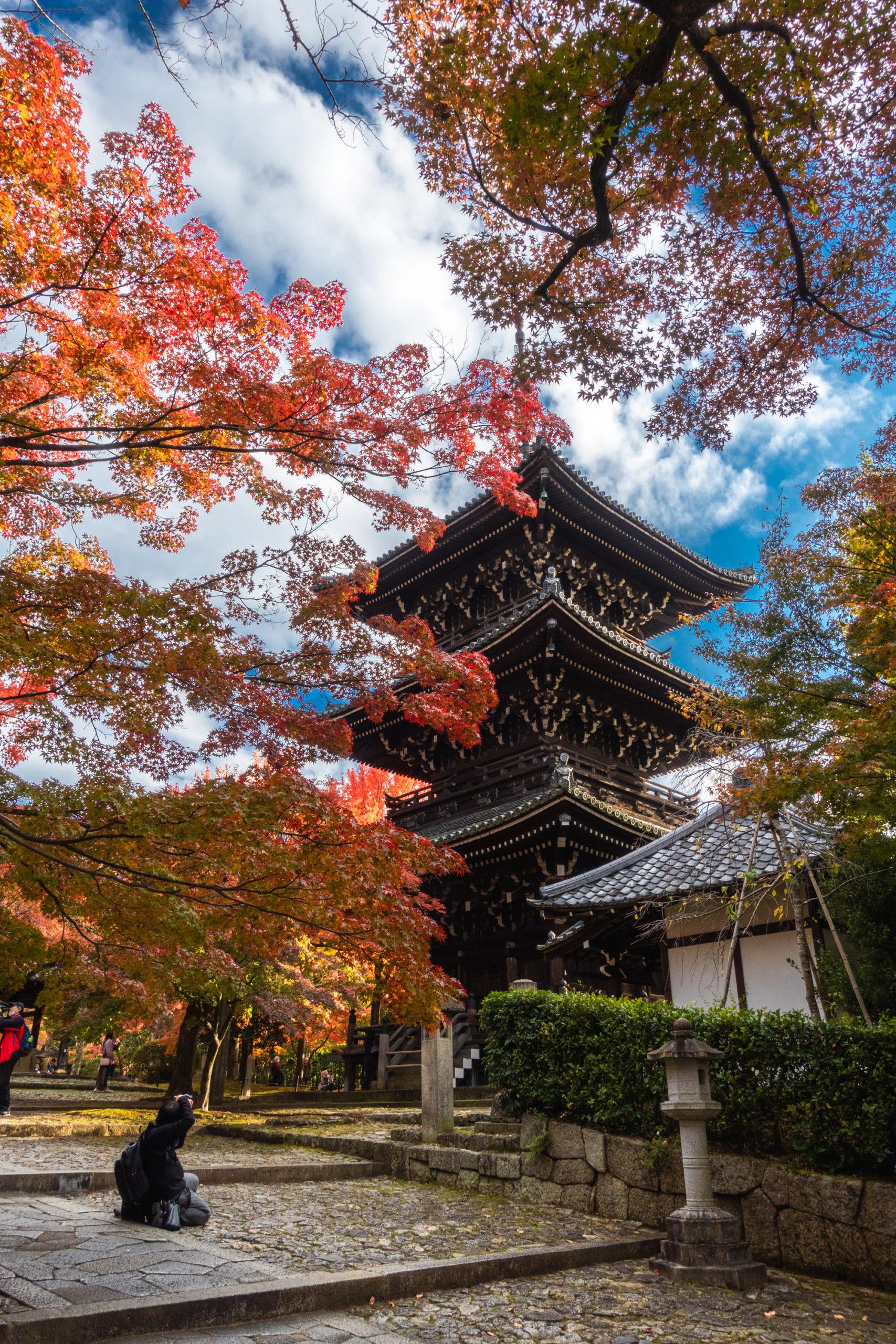 DSC00813-scaled 京都  真如堂(三重塔と紅葉の風情を感じる景色が美しい秋におすすめのスポット!撮影した写真の紹介、アクセス情報など)