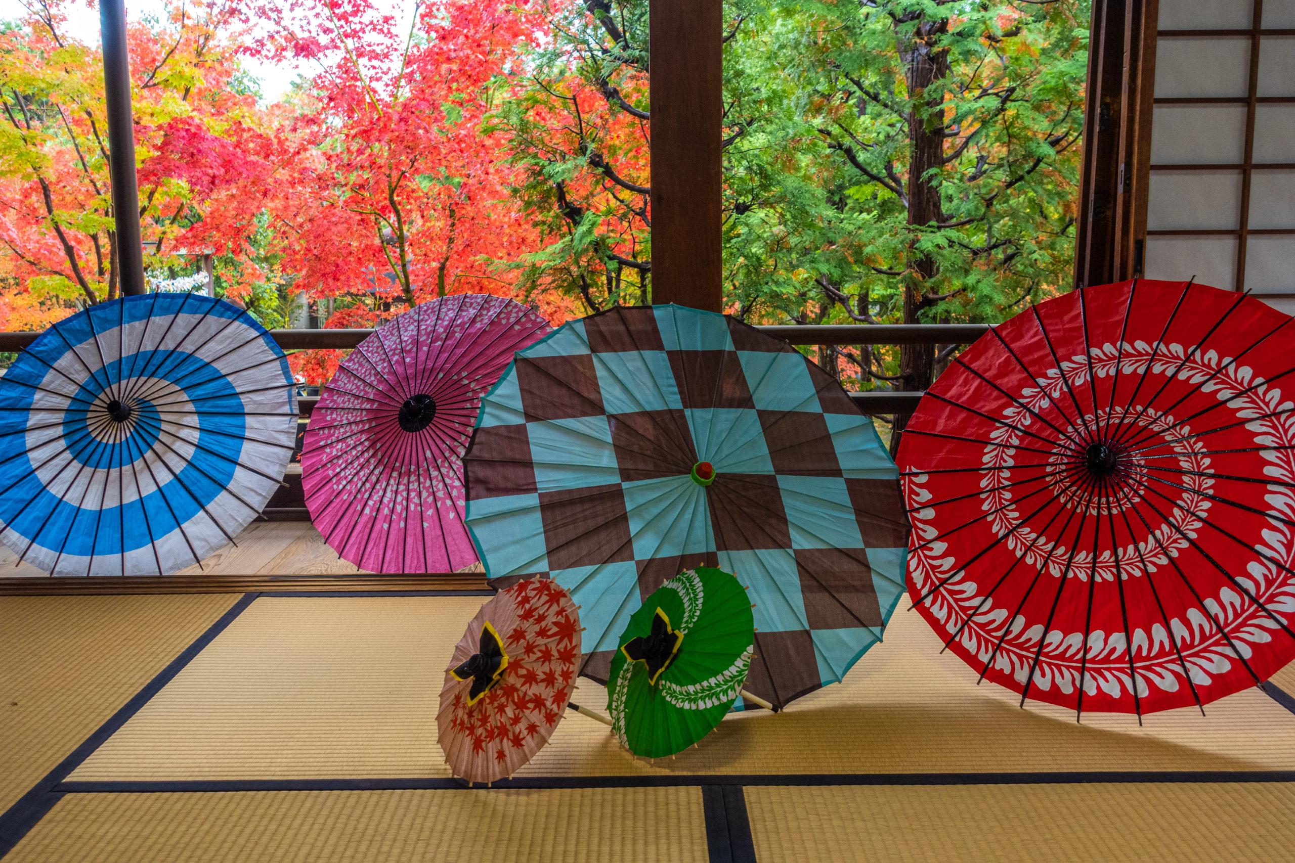 DSC00913-scaled 京都  勝林寺(紅葉と和傘の風情を感じる景色が美しい秋におすすめのスポット!撮影した写真の紹介、アクセス情報など)