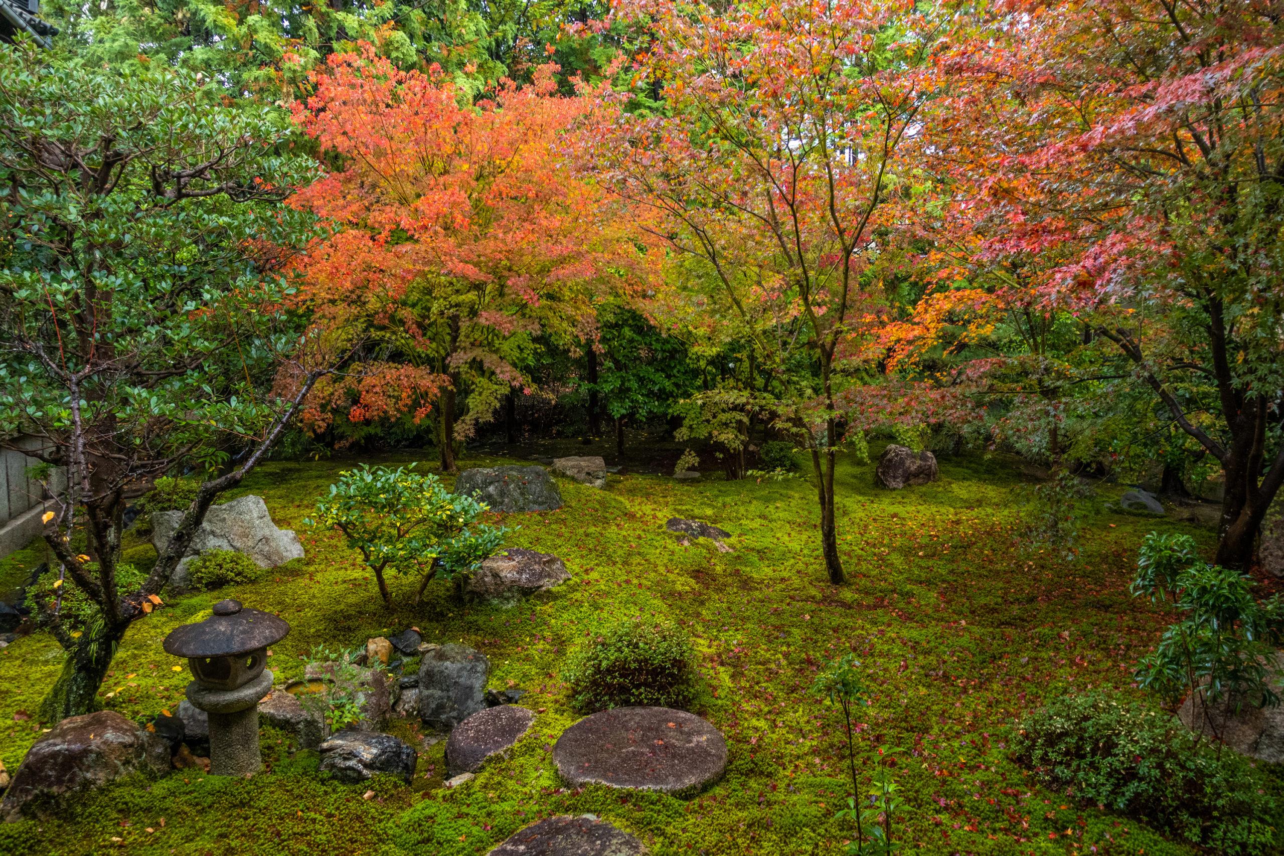 DSC00948-scaled 京都  勝林寺(紅葉と和傘の風情を感じる景色が美しい秋におすすめのスポット!撮影した写真の紹介、アクセス情報など)