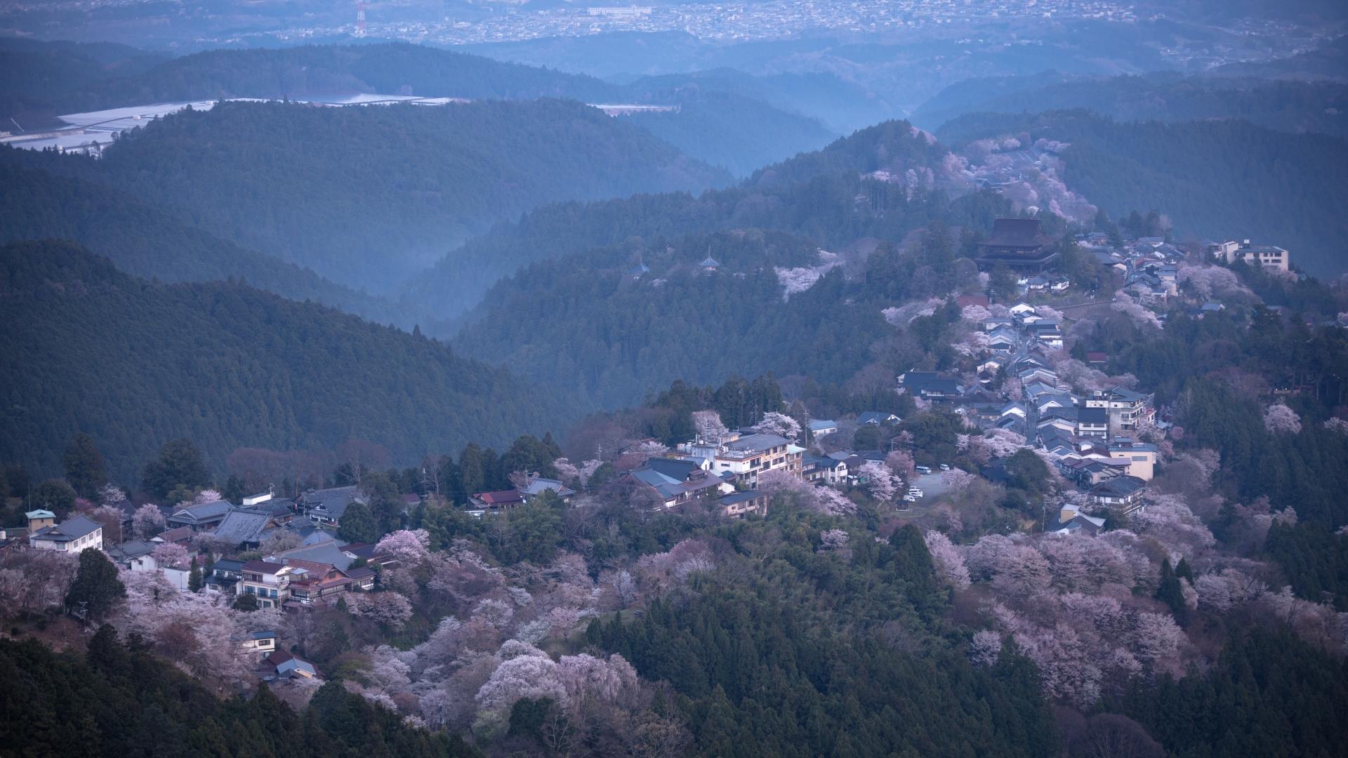 4325091_m 奈良県  吉野山(山が桜に染まる春におすすめの絶景スポット! 写真の紹介、アクセス情報や駐車場情報など)