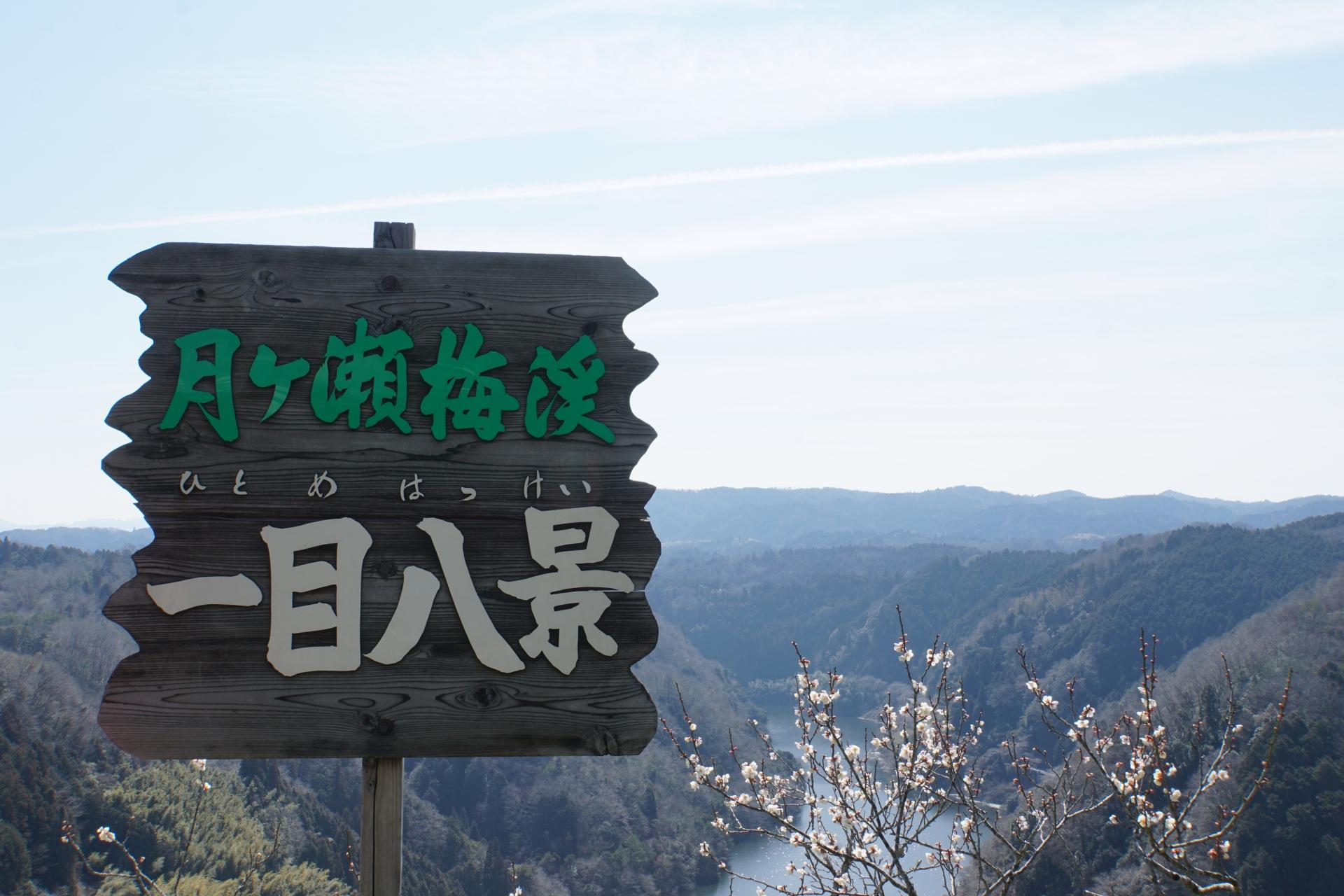 925389_m 奈良県  月ヶ瀬梅林(約1万本の梅が咲く春におすすめの絶景スポット!雲海も見所! 写真の紹介、アクセス情報や駐車場情報など)