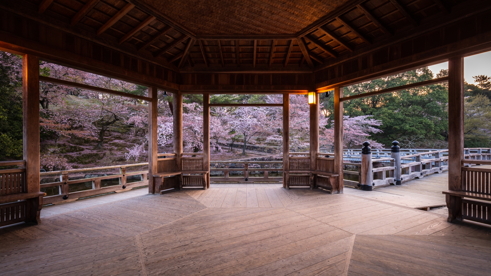 3916083_m 奈良県  奈良公園(鹿と桜の美しい景色が見れる春におすすめの桜スポット! 写真の紹介、アクセス情報や駐車場情報など)