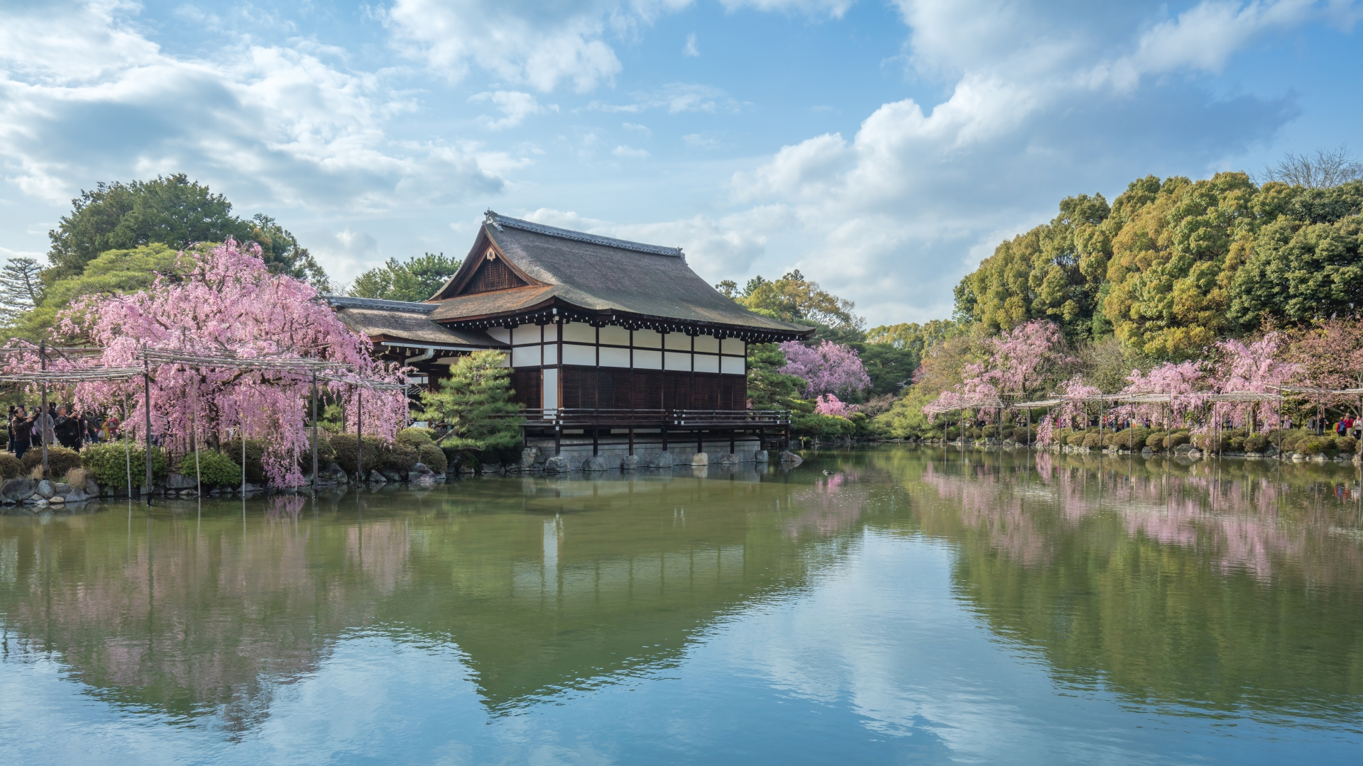 3963407_m 京都府 平安神宮(水面に映る桜の景色が美しい春におすすめ桜写真スポット! 撮影した写真の紹介、アクセス情報など)