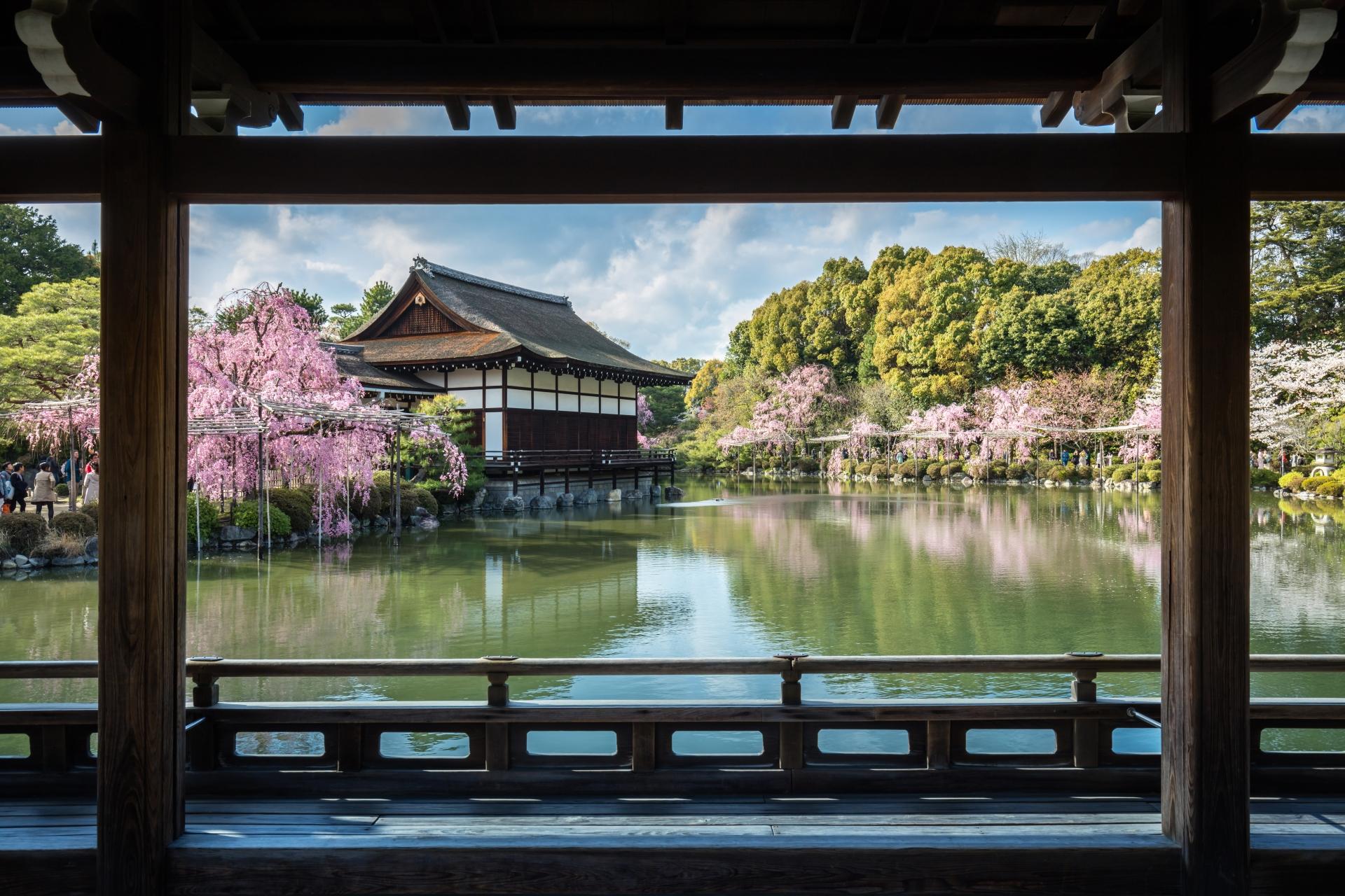 3963409_m 京都府 平安神宮(水面に映る桜の景色が美しい春におすすめ桜写真スポット! 撮影した写真の紹介、アクセス情報など)
