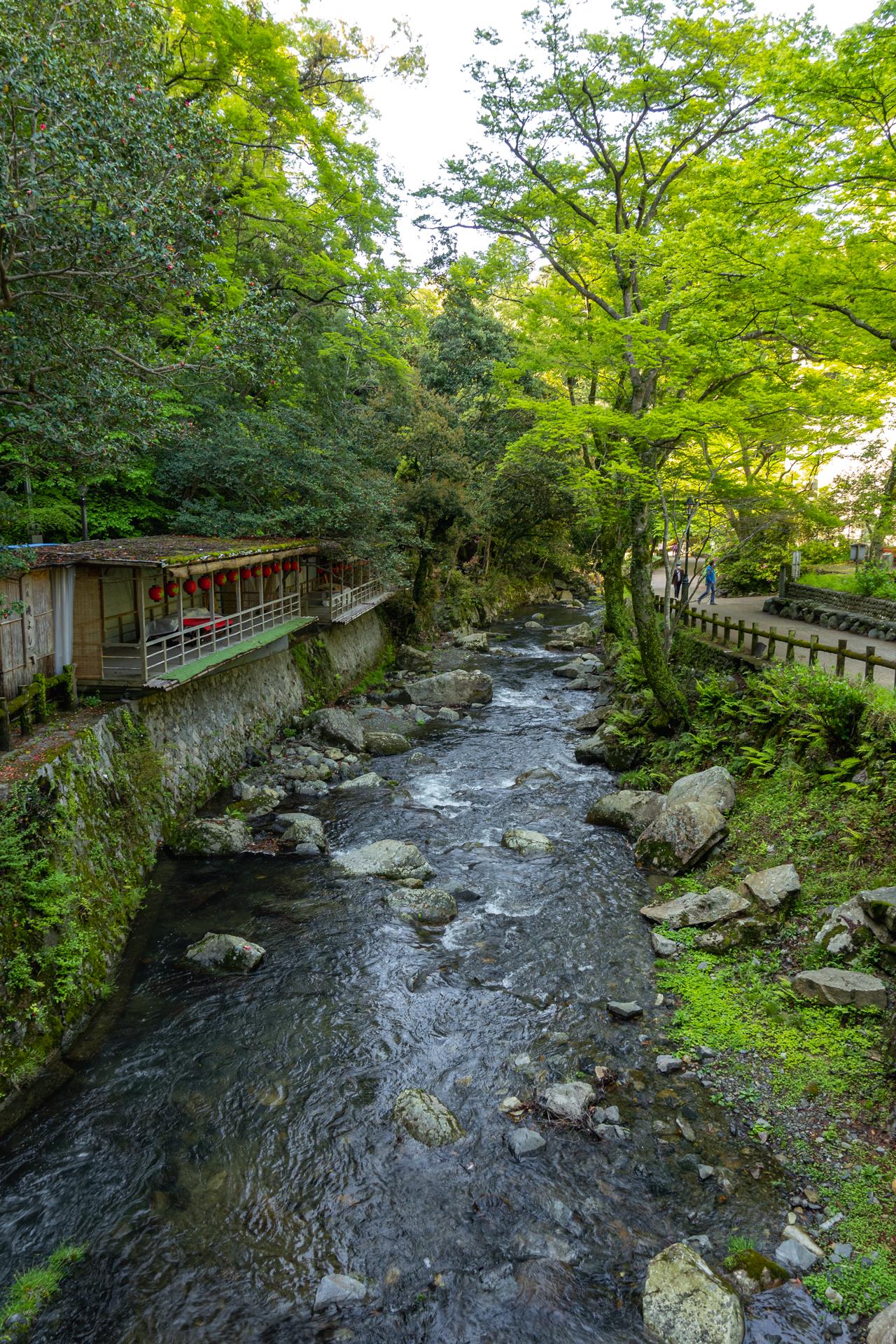 DSC05776 大阪府 箕面大滝(日本の滝百選に選定された新緑に染まる絶景の滝スポット! 写真の紹介、アクセス情報など)