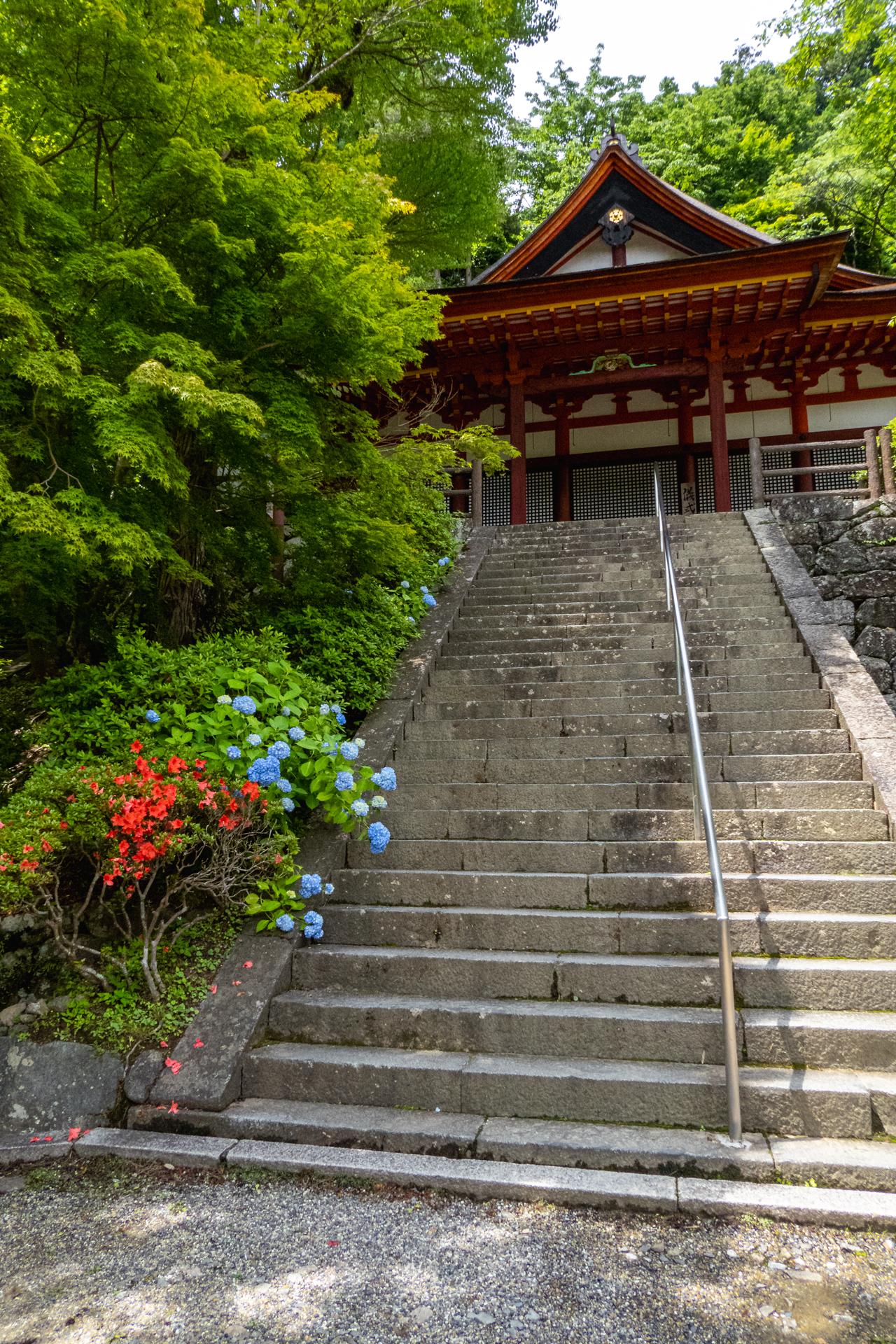 P1001095 奈良県  談山神社(あじさいと新緑の景色が美しい初夏におすすめのスポット! 写真の紹介、アクセス情報や駐車場情報など)
