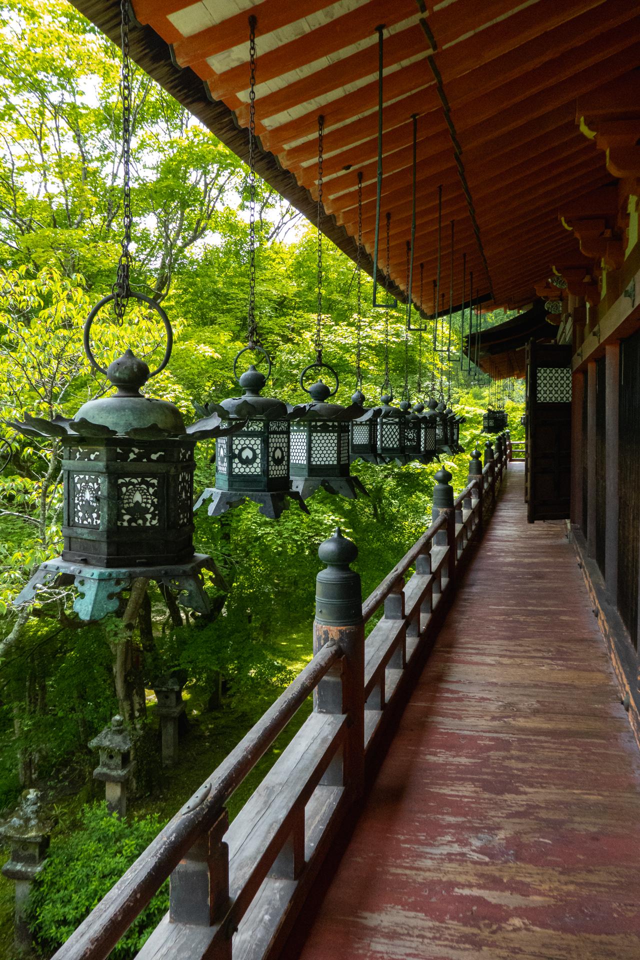 P1001190 奈良県  談山神社(あじさいと新緑の景色が美しい初夏におすすめのスポット! 写真の紹介、アクセス情報や駐車場情報など)