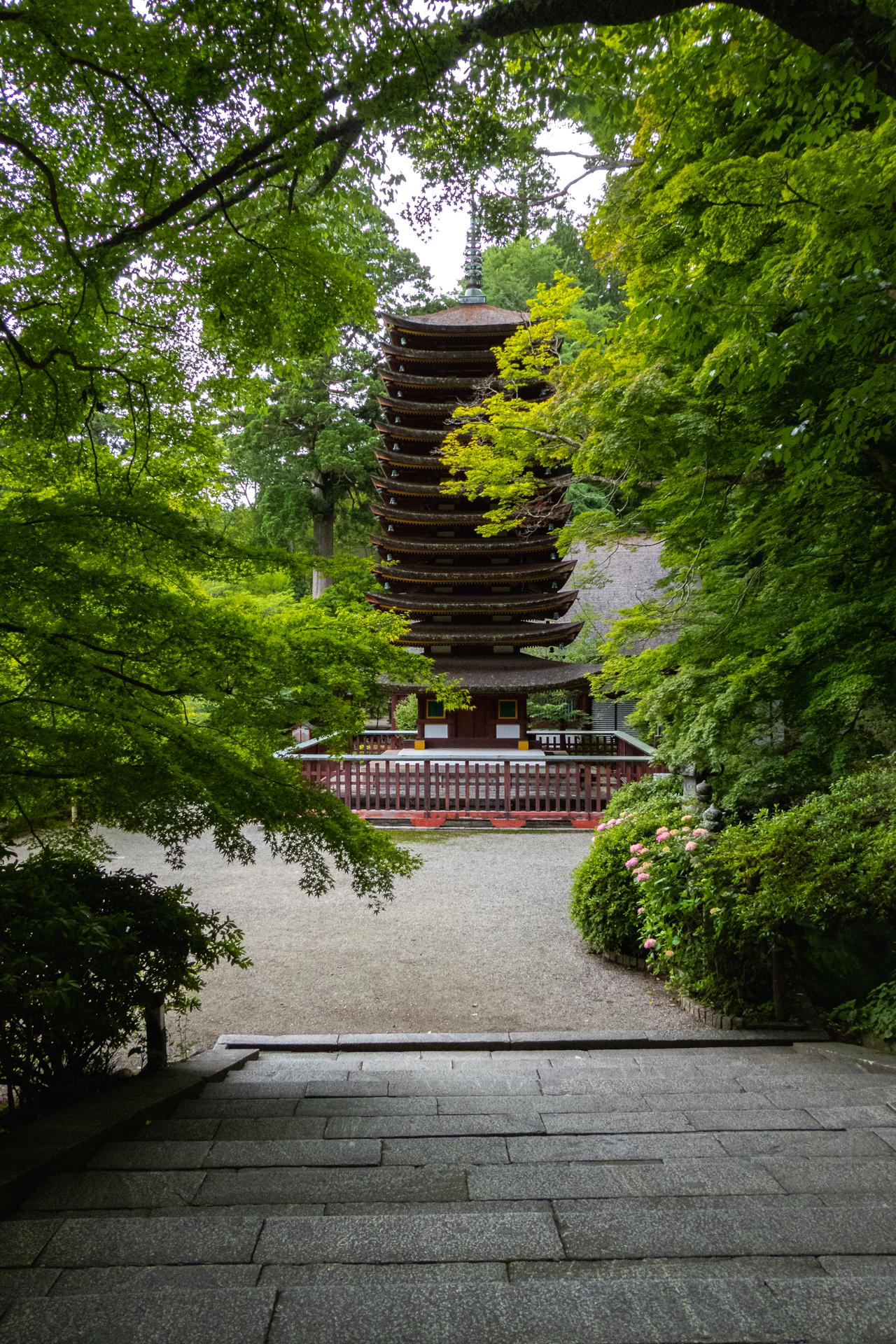 P1001198 奈良県  談山神社(あじさいと新緑の景色が美しい初夏におすすめのスポット! 写真の紹介、アクセス情報や駐車場情報など)