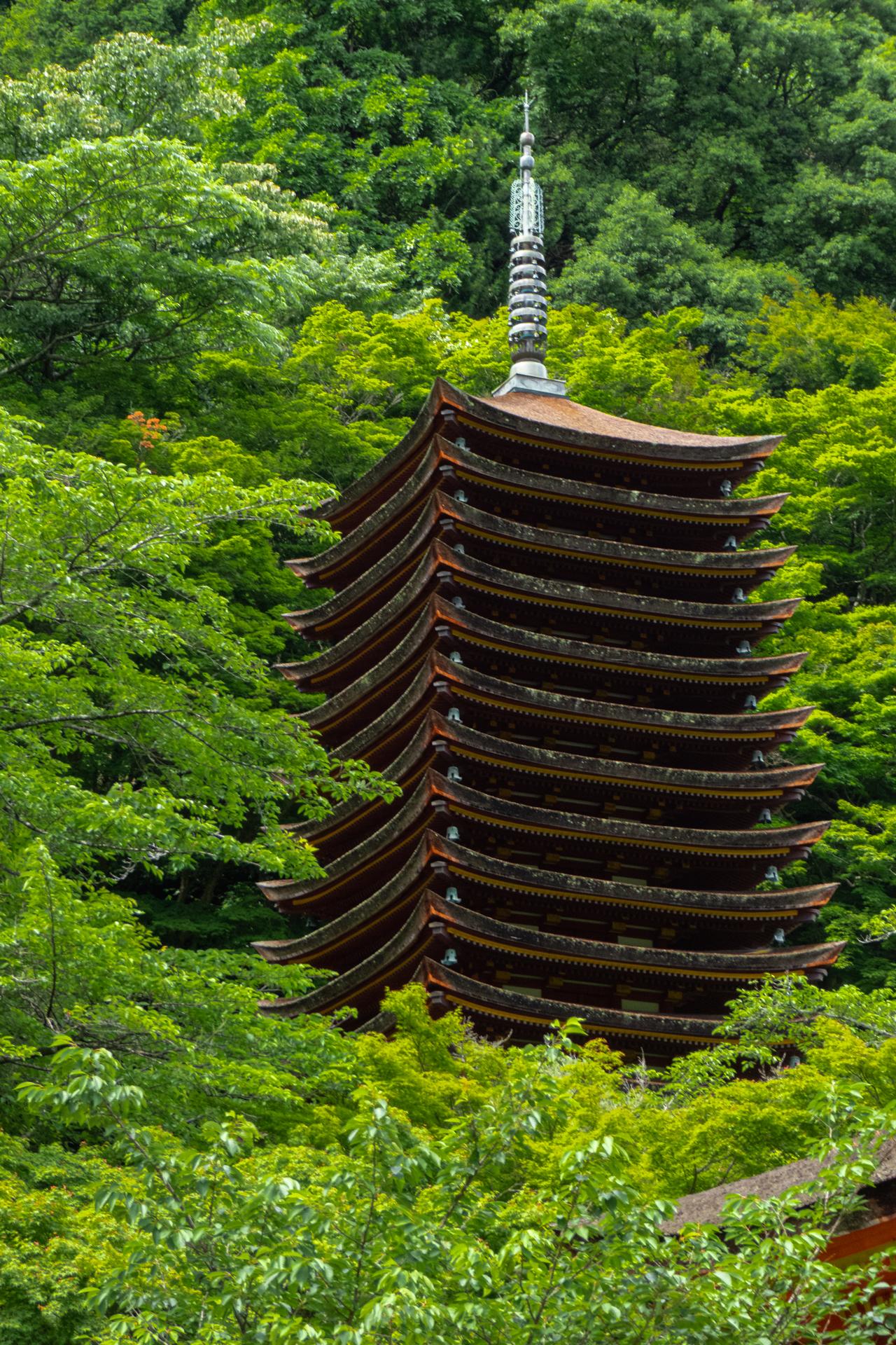 P1001234 奈良県  談山神社(あじさいと新緑の景色が美しい初夏におすすめのスポット! 写真の紹介、アクセス情報や駐車場情報など)