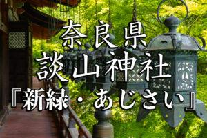 fc8dedd424f465d9dad3aeb0643dd8da-300x200 秋-京都ブログアイキャッチ用