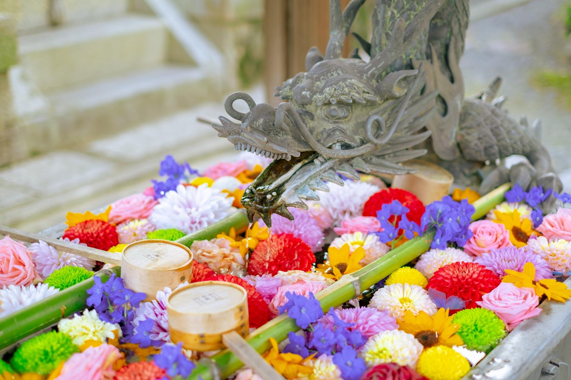 4218265_m 京都府 楊谷寺(境内に5000株のあじさいが咲き誇る初夏におすすめのスポット!写真の紹介、アクセス情報など)
