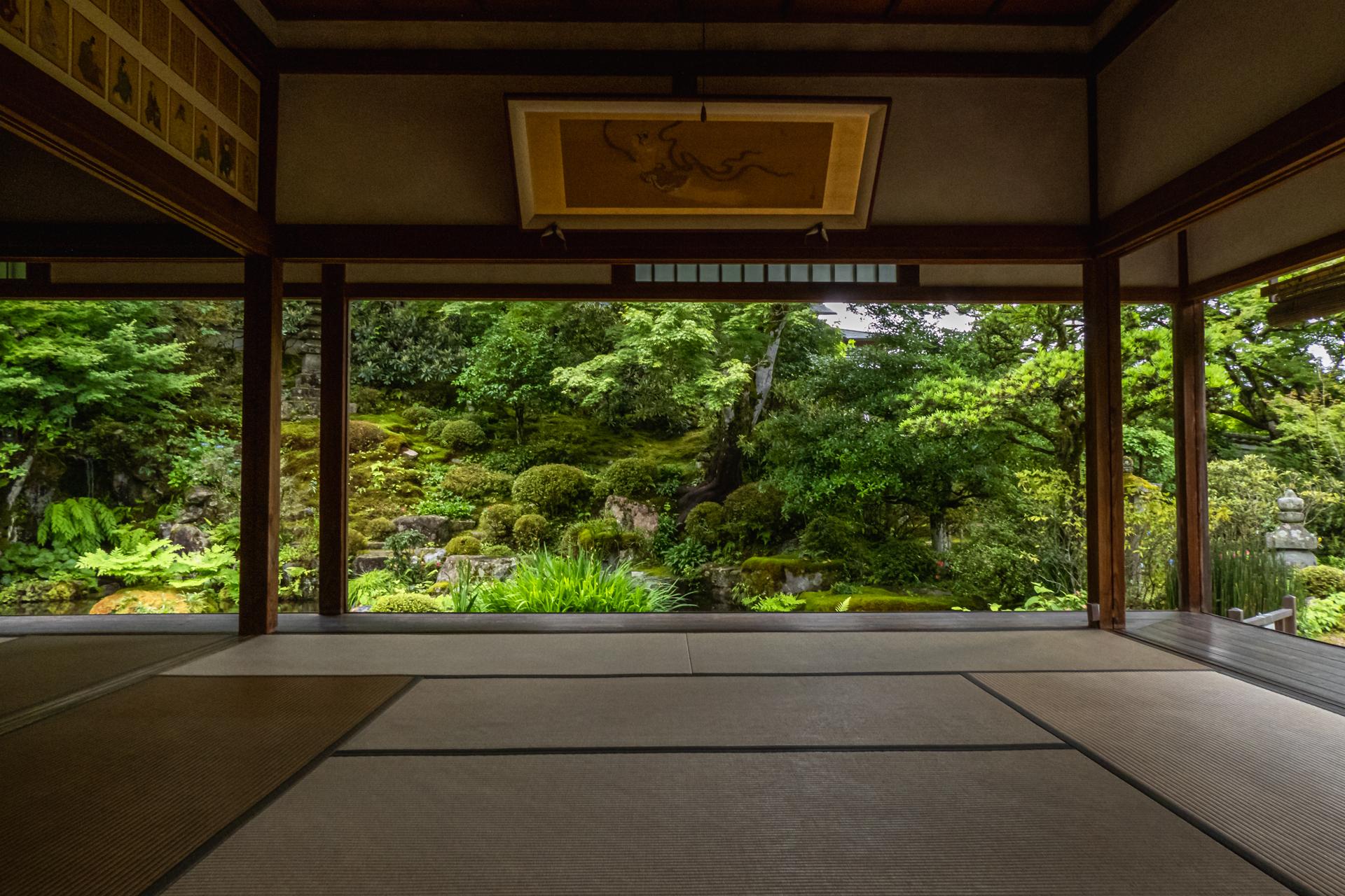 P1001501 京都府 実光院(夏の花が美しく咲く大原のおすすめスポット!写真の紹介、アクセス情報など)