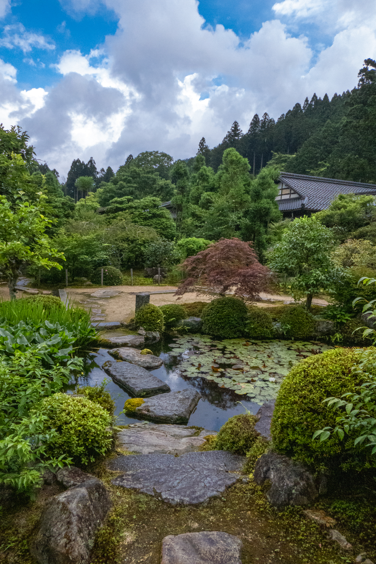 P1001529 京都府 実光院(夏の花が美しく咲く大原のおすすめスポット!写真の紹介、アクセス情報など)