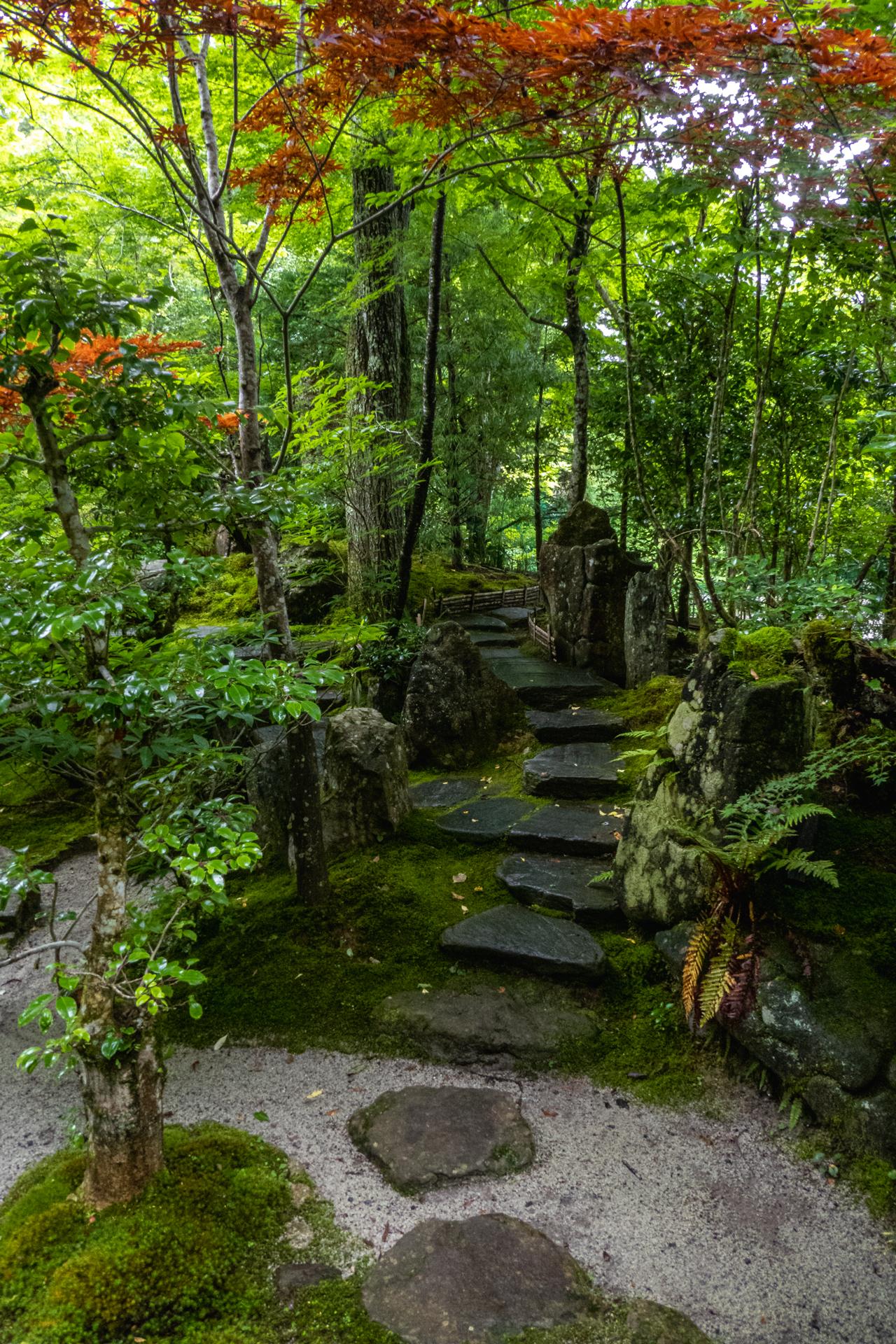 P1001640 京都府 宝泉院(額縁庭園と新緑の景色が美しい夏におすすめスポット!写真の紹介、アクセス情報など)